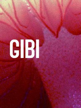 Grupo de investigaciones biologicas / GIBI
